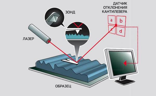 видов сканирующей зондовой